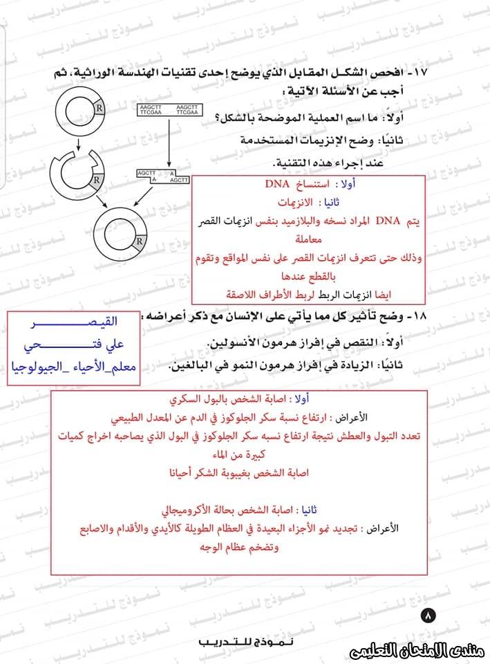 exam-eg.com_1593383234658919.jpg