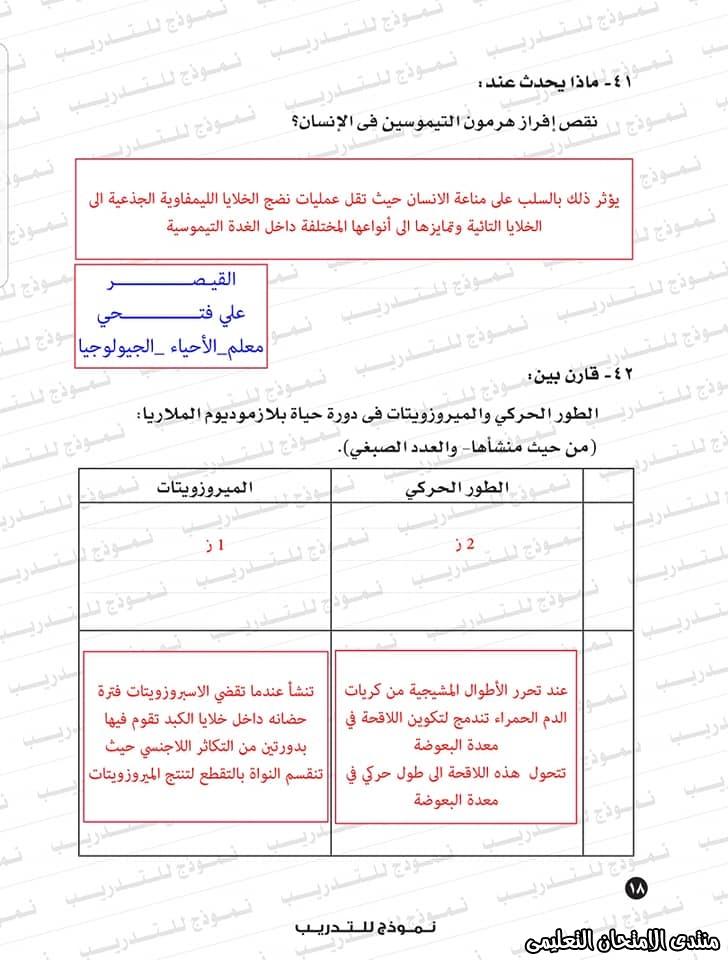 exam-eg.com_1593383234694620.jpg