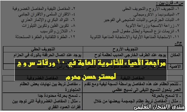 exam-eg.com_15934617103641.jpg