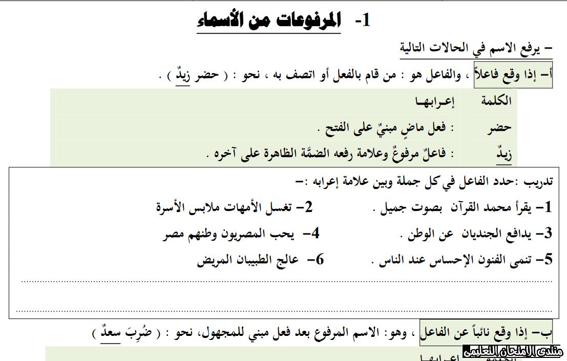 exam-eg.com_159844871450011.png