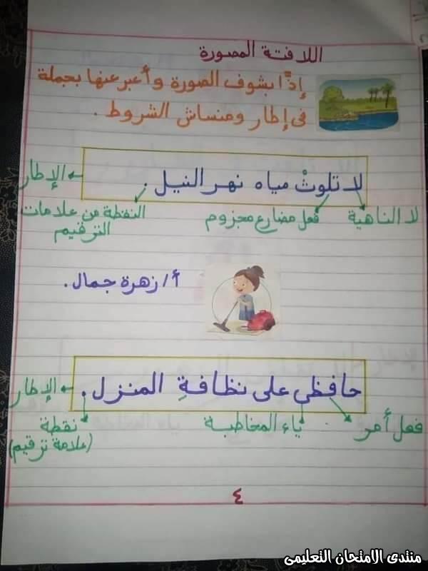 exam-eg.com_160487437495574.jpg