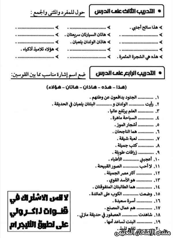 exam-eg.com_160501863503399.jpg