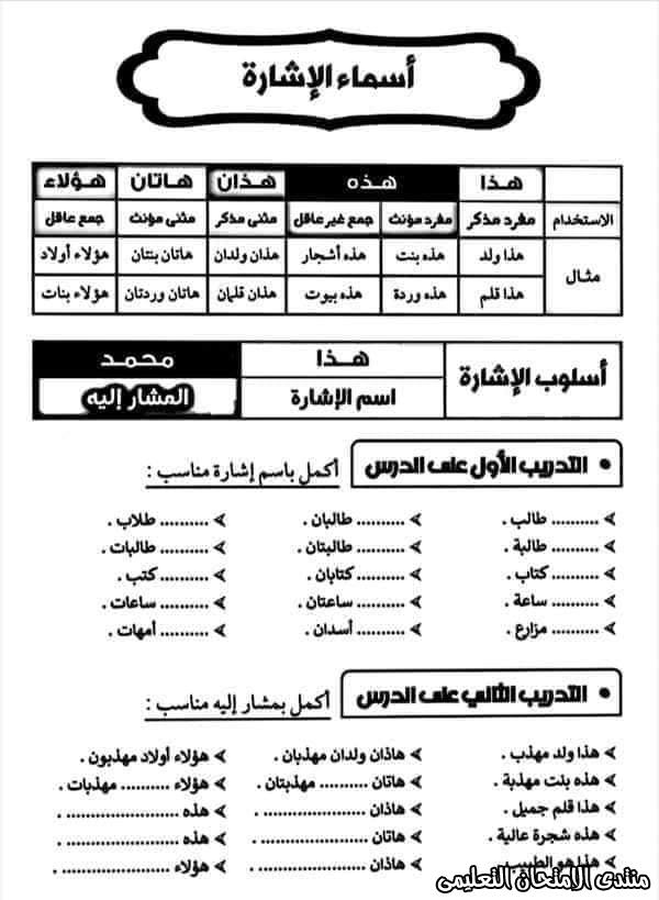 exam-eg.com_1605018635054610.jpg