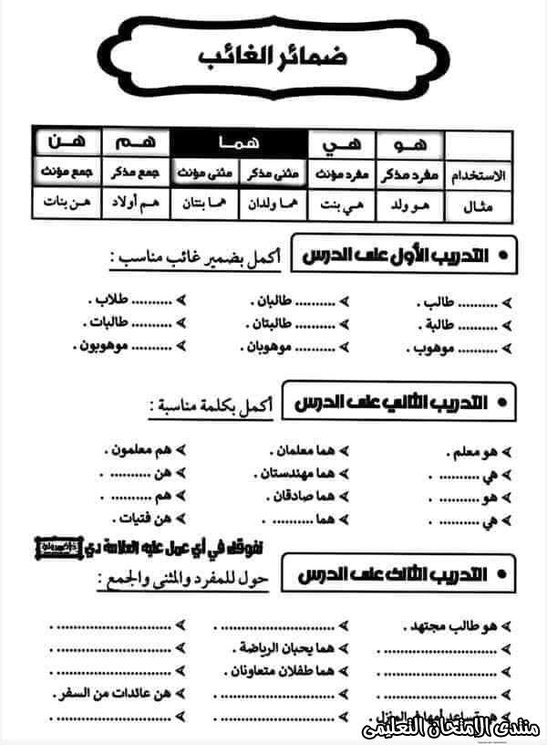 exam-eg.com_160501866318141.jpg