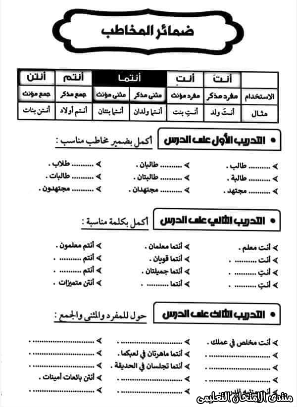 exam-eg.com_16050186632052.jpg