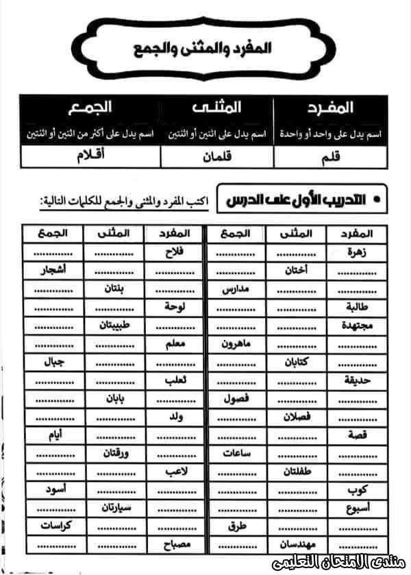exam-eg.com_160501866334428.jpg