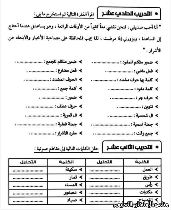 exam-eg.com_16050186871128.jpg