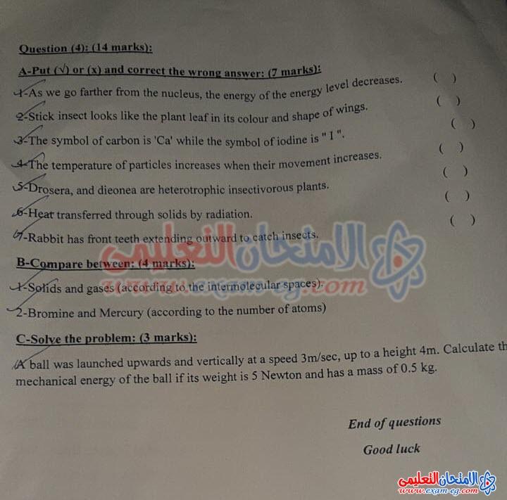 exam-eg.com_1607960560317314.jpeg