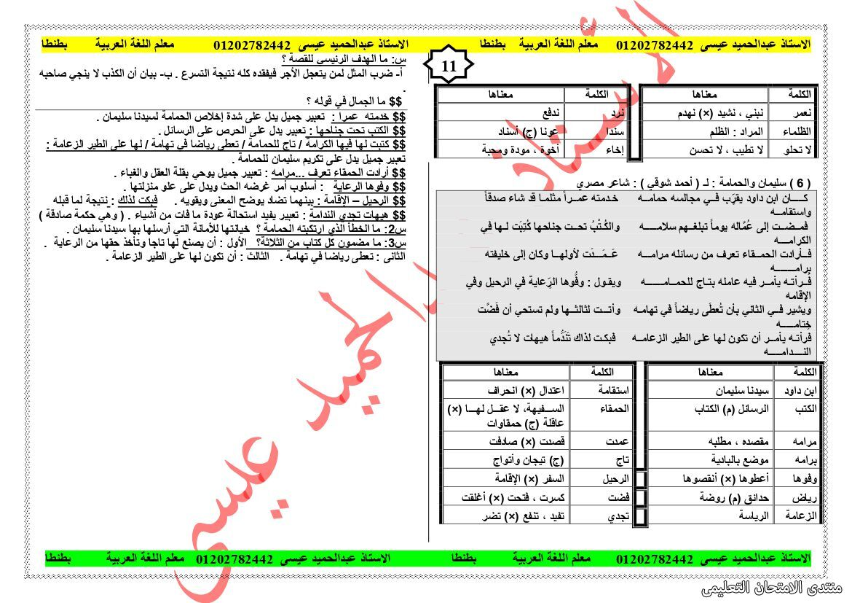 exam-eg.com_1608988661097811.jpg