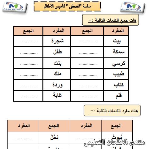 exam-eg.com_160994641178673.png