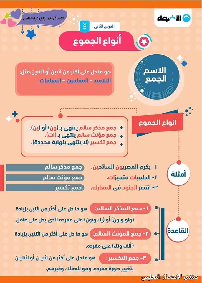 exam-eg.com_161037405430666.jpg