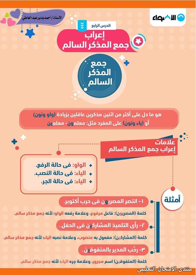 exam-eg.com_1610374054516212.jpg