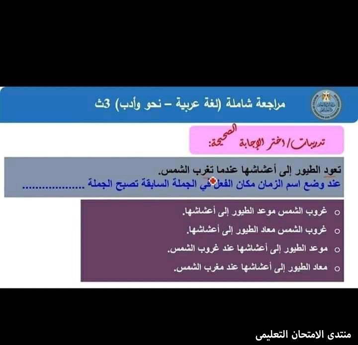 exam-eg.com_161057261530576.jpg