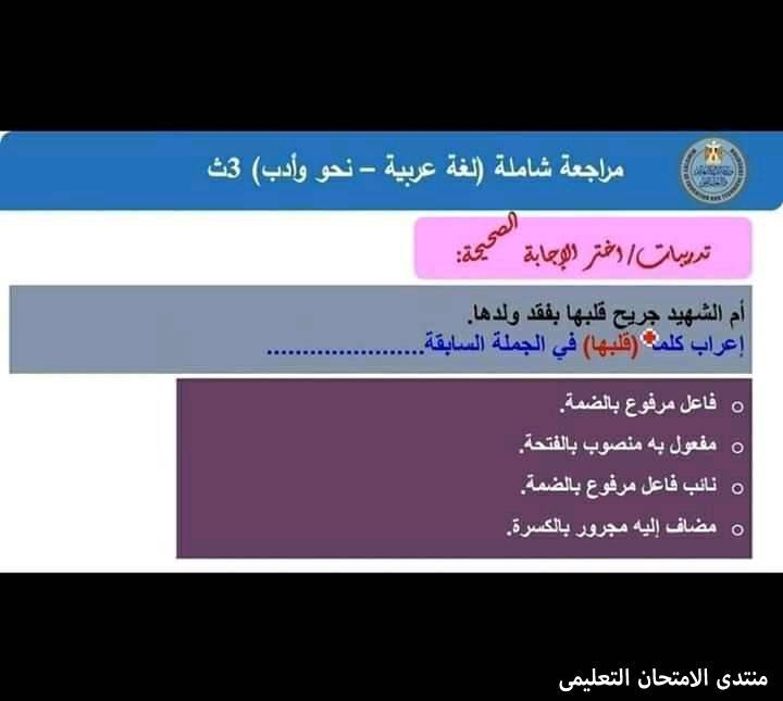 exam-eg.com_1610572615485212.jpg