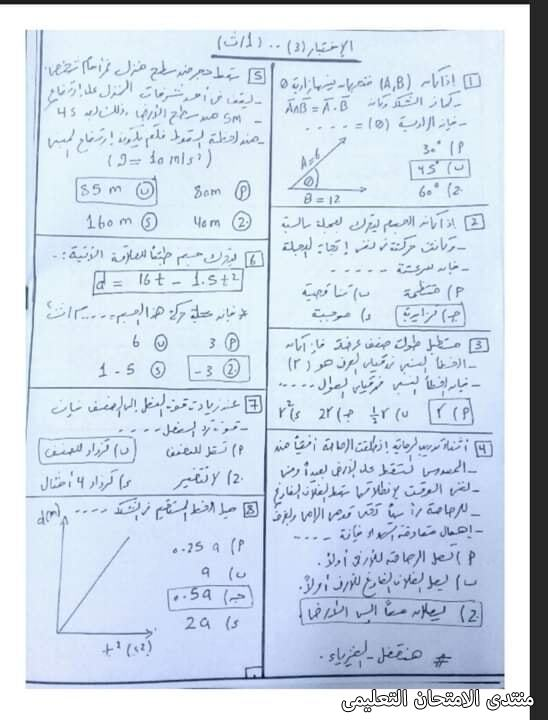 exam-eg.com_161350043618228.jpg