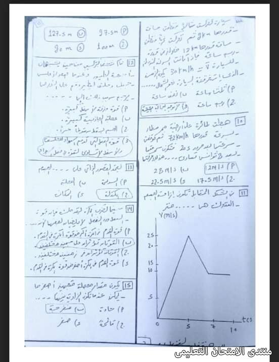 exam-eg.com_1613500436408715.jpg