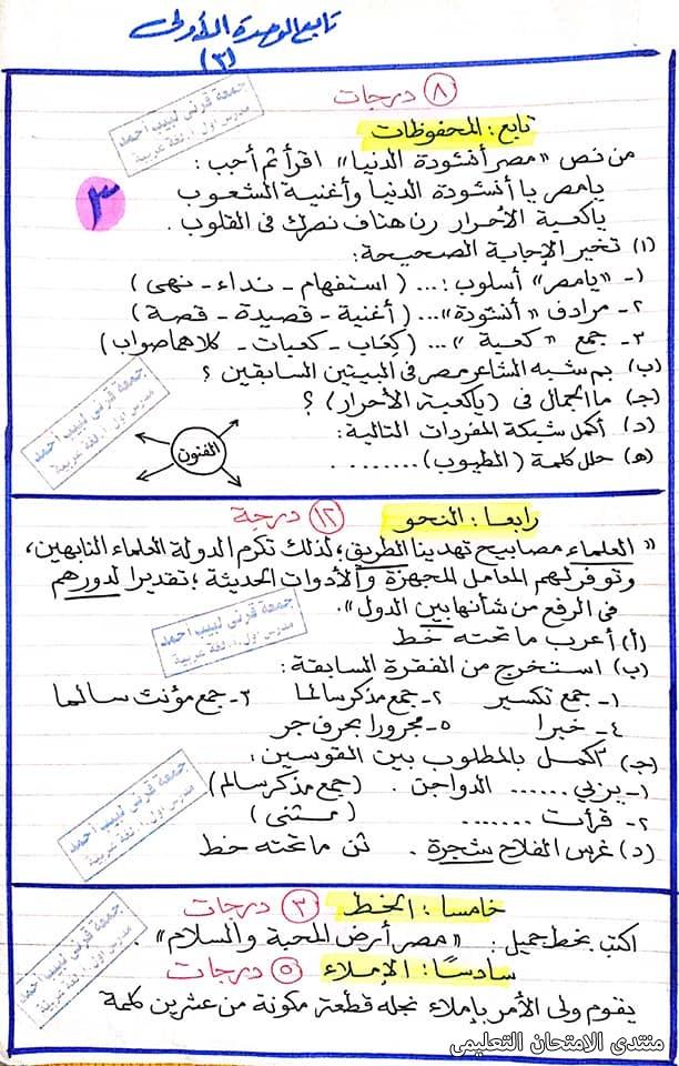 exam-eg.com_161391266544893.jpg