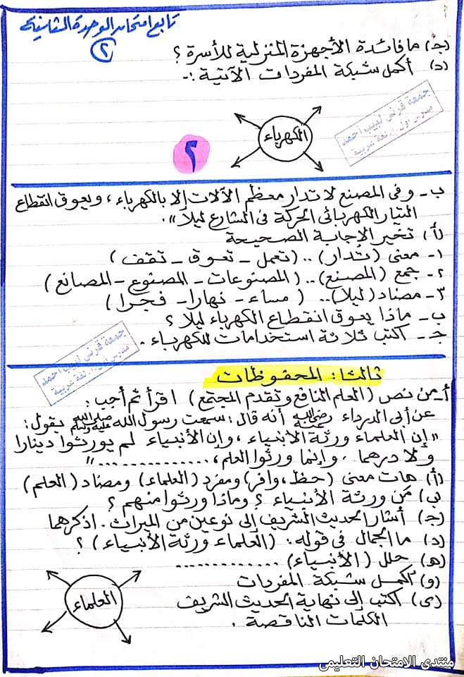 exam-eg.com_16139126655415.jpg