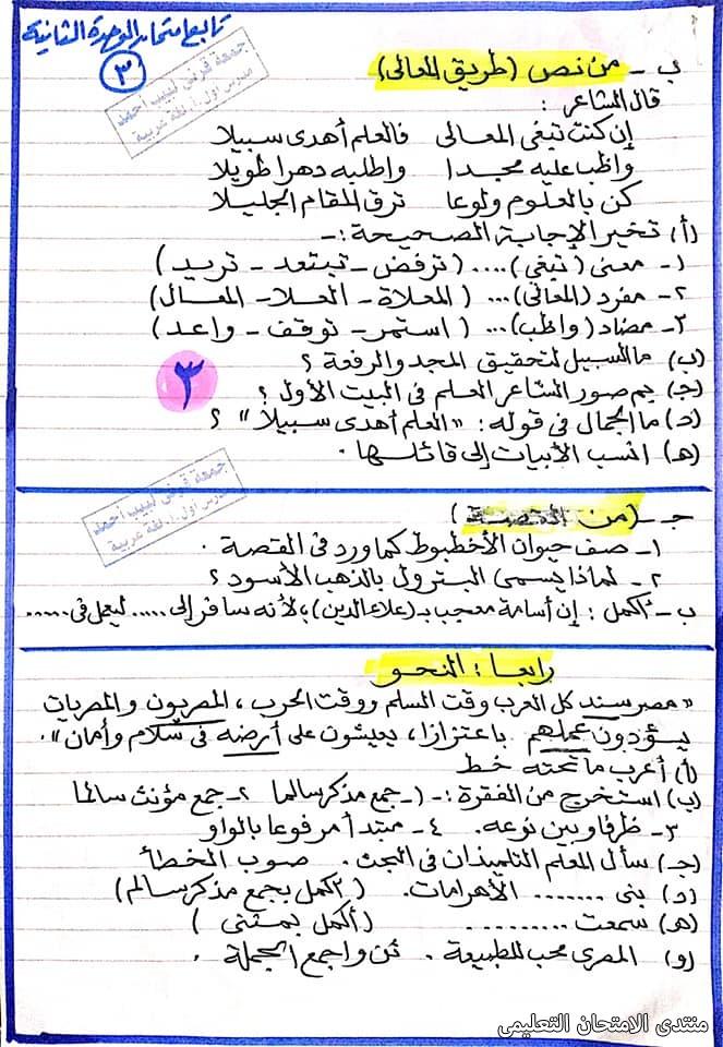 exam-eg.com_161391266558936.jpg
