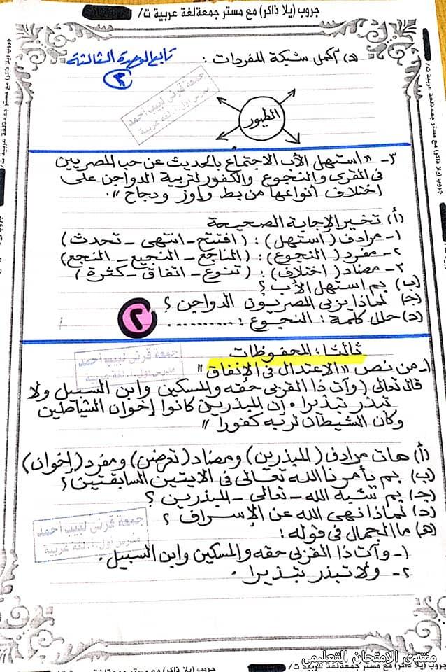 exam-eg.com_161391266568188.jpg