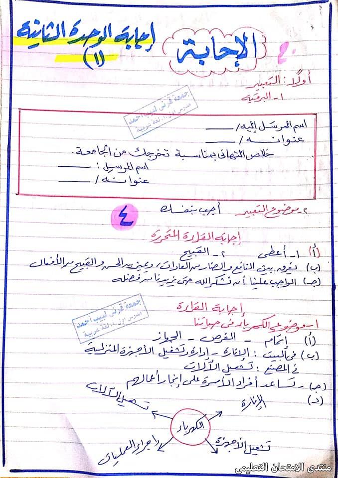 exam-eg.com_161391266593413.jpg