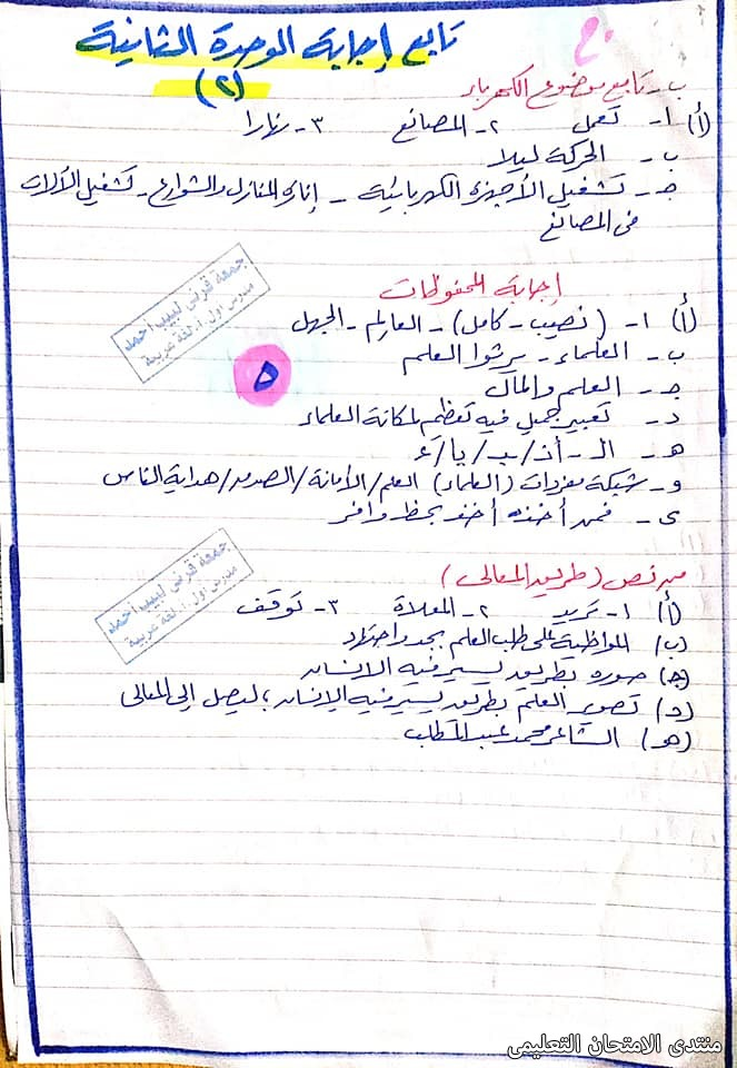 exam-eg.com_1613912665981914.jpg