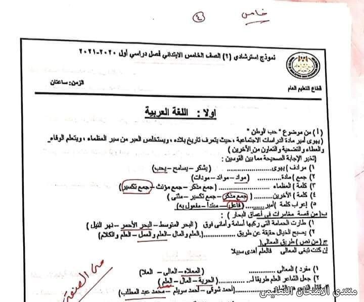 exam-eg.com_161410324731053.jpg