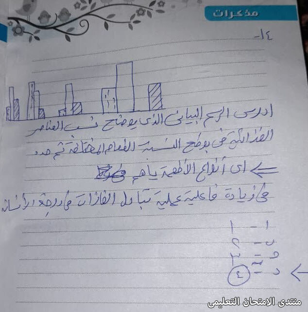 exam-eg.com_16143448567462.jpg