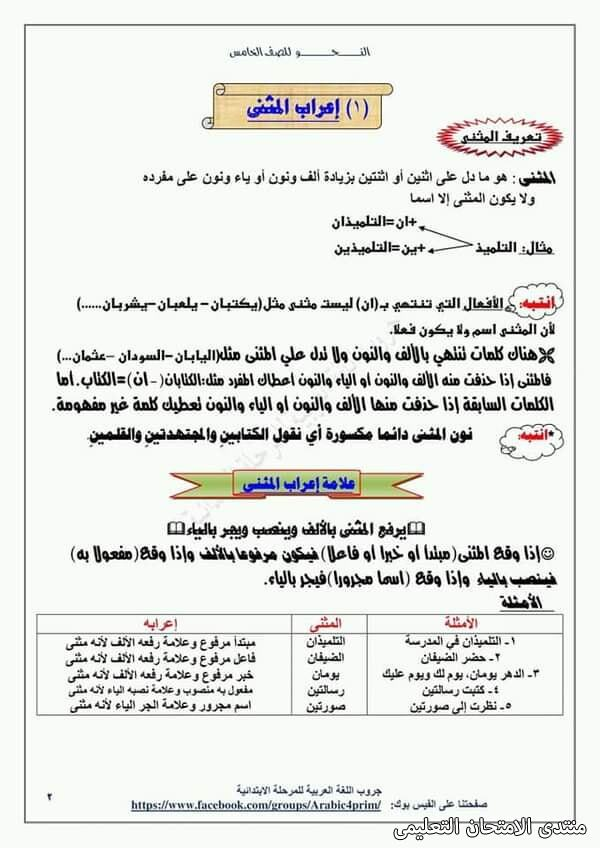 exam-eg.com_161453964915791.jpg