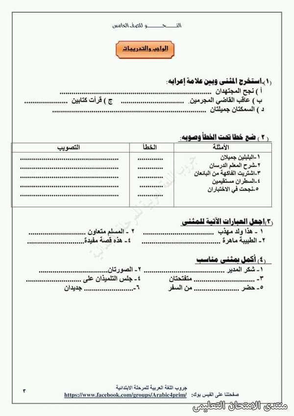 exam-eg.com_161453964921612.jpg