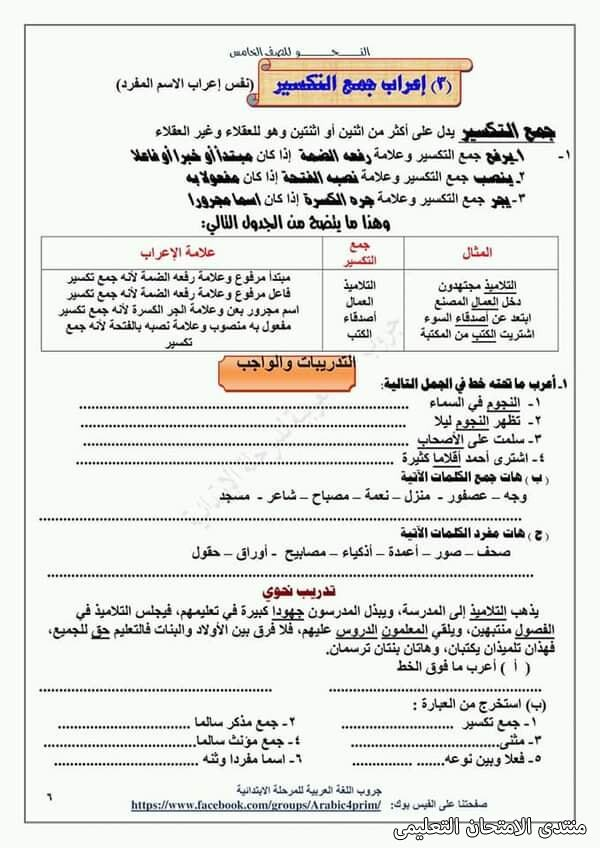 exam-eg.com_161453964931724.jpg