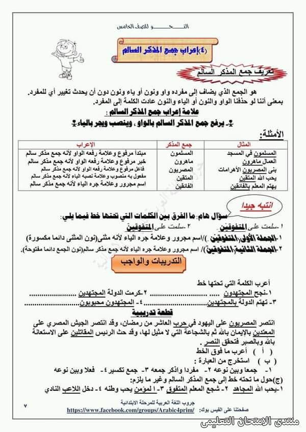 exam-eg.com_161453964937725.jpg