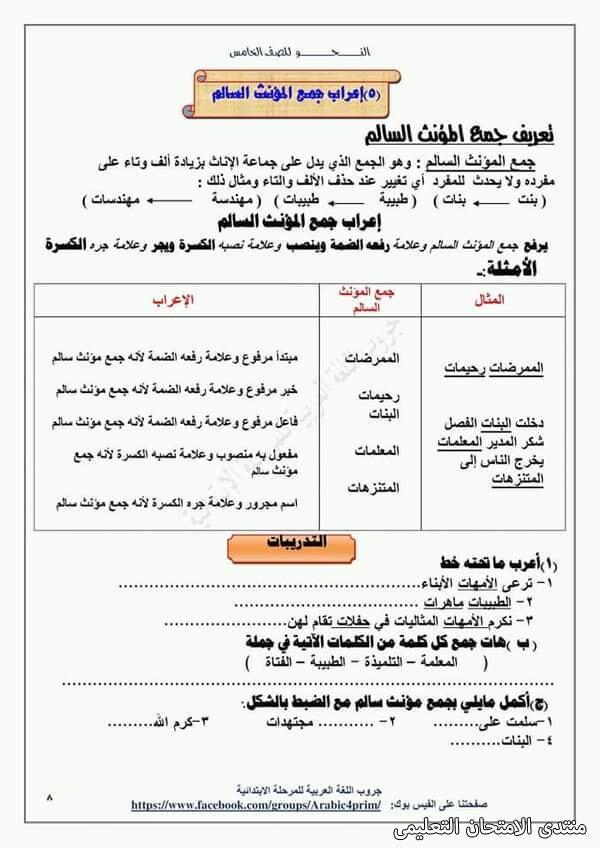 exam-eg.com_161453964947946.jpg