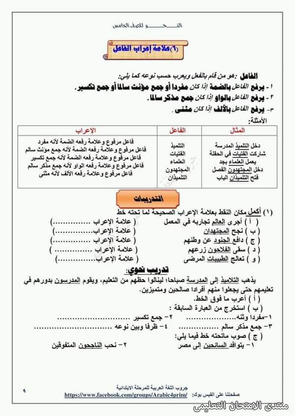 exam-eg.com_161453964953737.jpg