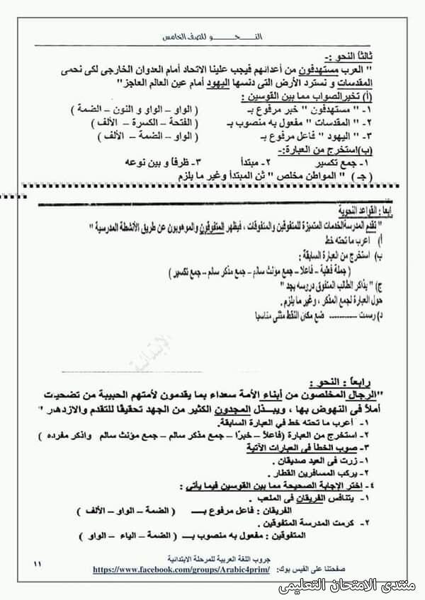 exam-eg.com_161453964958158.jpg