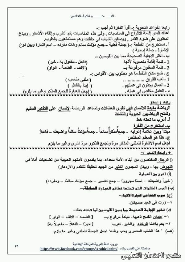 exam-eg.com_161453964963059.jpg