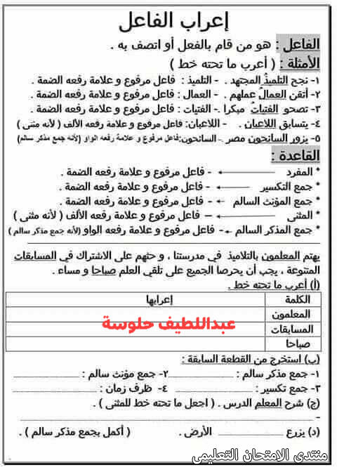 exam-eg.com_161454164473851.jpg