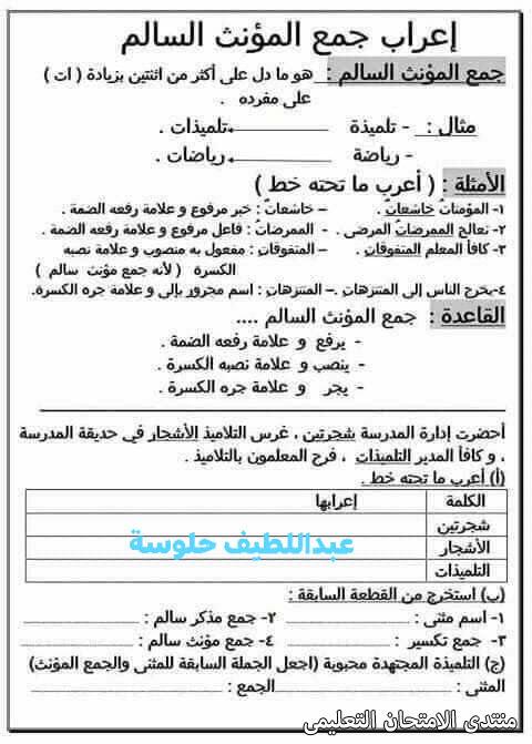 exam-eg.com_161454164483483.jpg