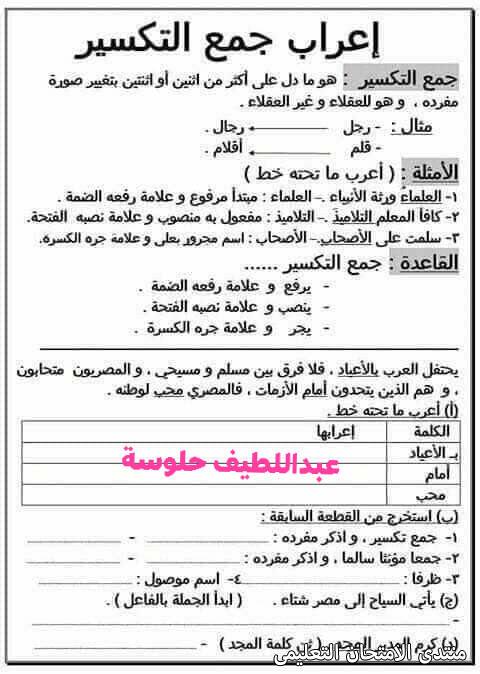 exam-eg.com_161454164495.jpg