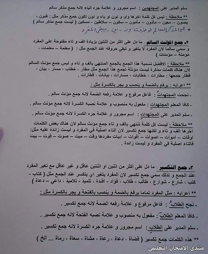 exam-eg.com_161454673643332.jpg