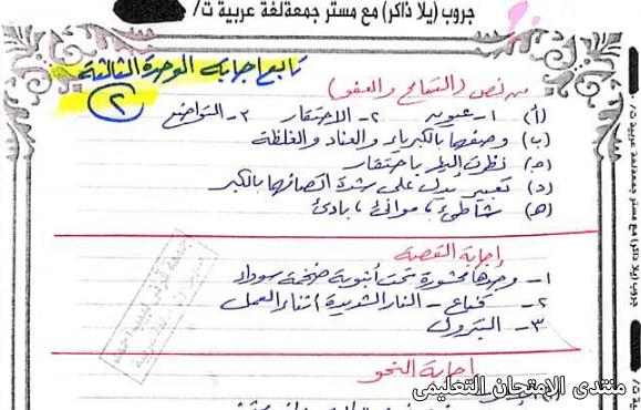exam-eg.com_161454883937451.png