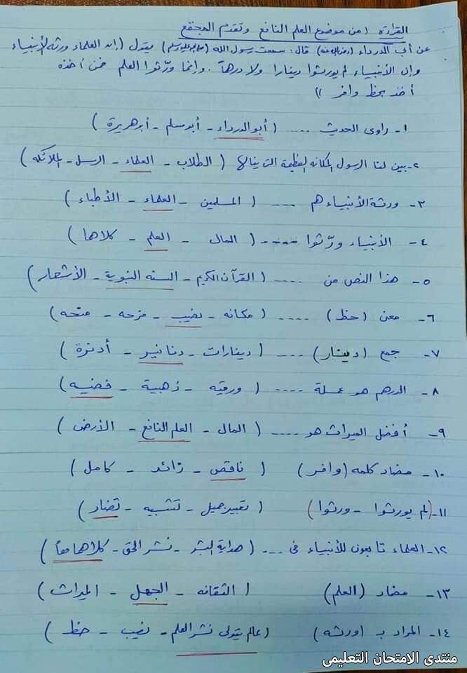 exam-eg.com_161528386148037.jpg