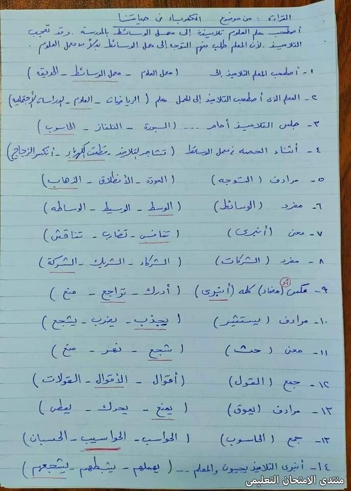 exam-eg.com_161528386151638.jpg