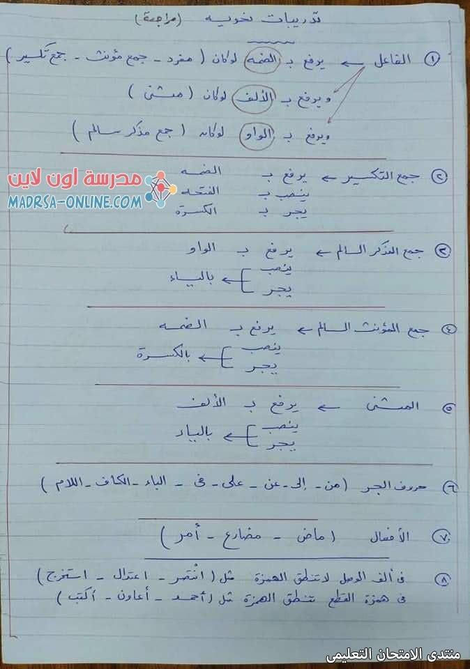 exam-eg.com_1615283861678813.jpg