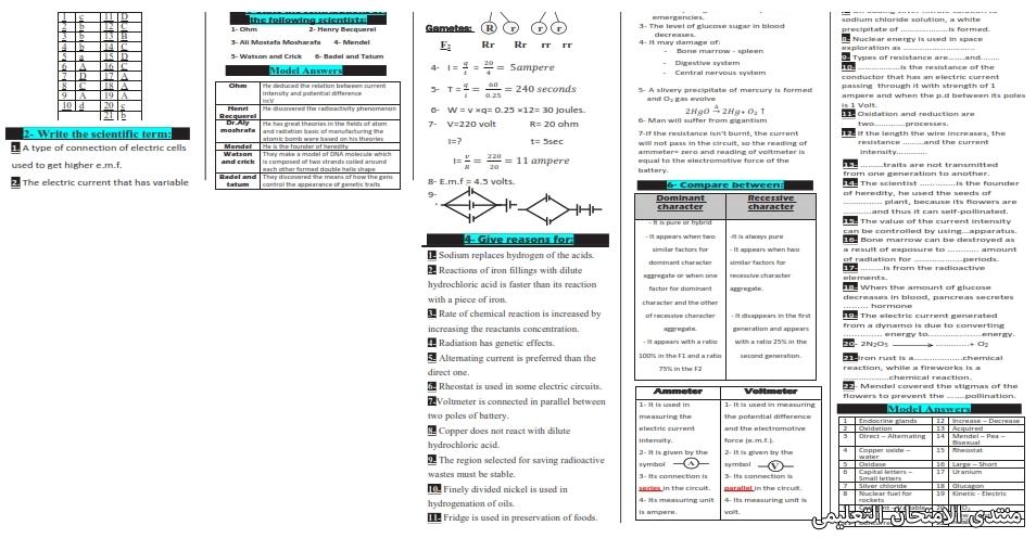 exam-eg.com_161537445536933.jpg