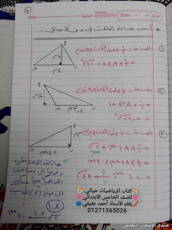 exam-eg.com_16161891416585.jpg