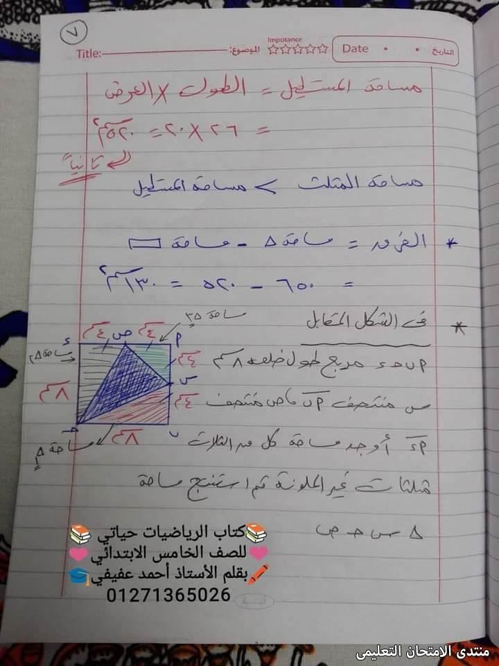exam-eg.com_161618914173387.jpg