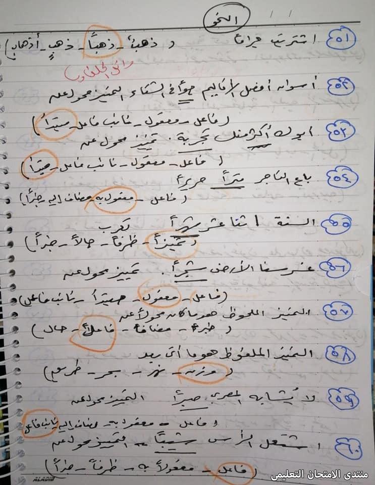 exam-eg.com_161652155705036.jpg