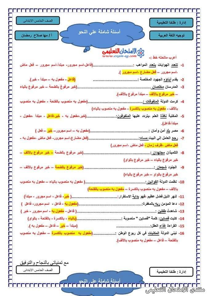 exam-eg.com_161658952690193.jpg