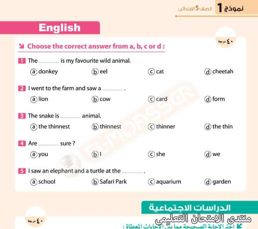 exam-eg.com_161662223406952.png